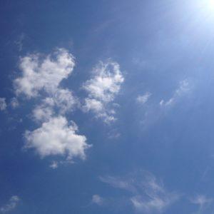 Cloud dove